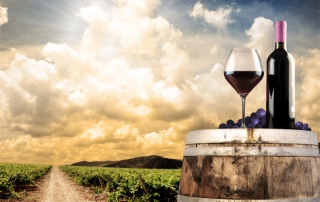 Q&A with Youngest Greek Master of Wine Yiannis Karakasis